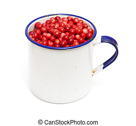 freshly piced lingonberries isolated on white background