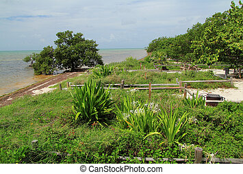 Oceanfront Campground in Long Key State Park, Florida Keys