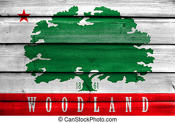 Flag of Woodland, California, USA, painted on old wood plank background