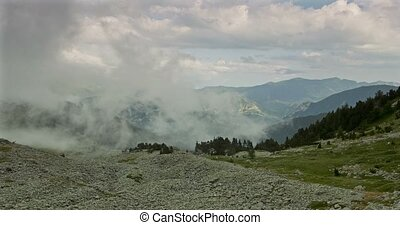 Fogbank And Mist At Vallon De Caralaite, France