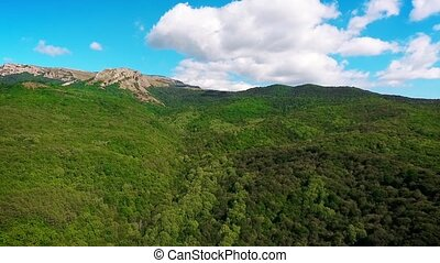 Aerial view with the forest, blue sky, clouds in a mountains...