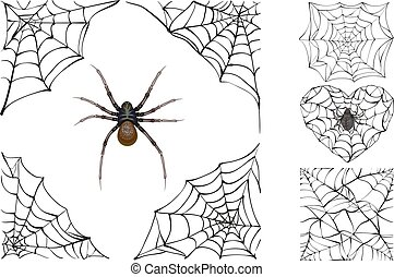 Web and poisonous spider Set Halloween accessory Isolated on...