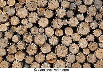 Log Pile - Pile of logs cut for firewood