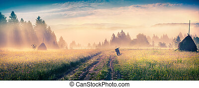 Haymaking in a Carpathian village Colorful scene in the...
