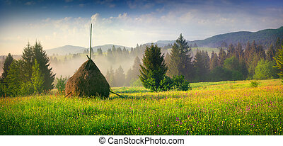 Haymaking in a Carpathian village. Colorful summer panorama...