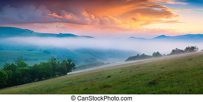 Dramatic summer scene in the foggy mountains. Few minutes...