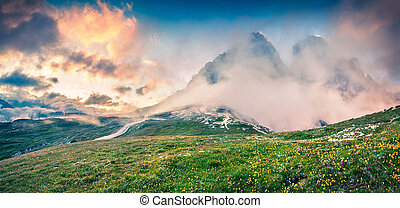 Fantastic colors summer panorama in the National Park Tre...