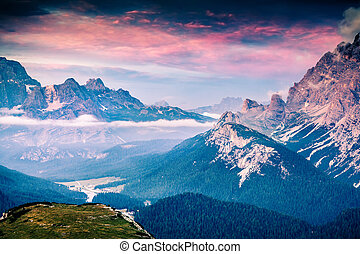 Colorful summer scene in the National Park Tre Cime De...