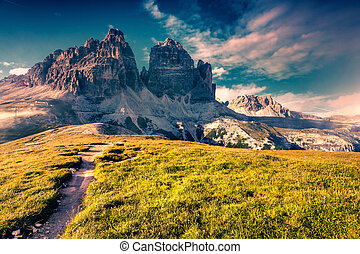 Colorful summer scene in the National Park Tre Cime di...