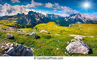 Green summer scene in National Park Tre Cime di Lavaredo....
