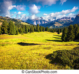 Sunny countryside scene in the Gardena valley. Colorful...