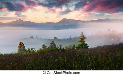 Colorful summer scene in the foggy mountain village....