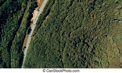 Aerial summer view with the forest, highway, cars, trucks in...