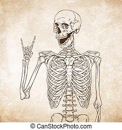 Human skeleton posing over old grunge paper background...