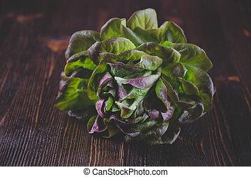 Organic Red Oakleaf lettuce on dark wooden background. Color...