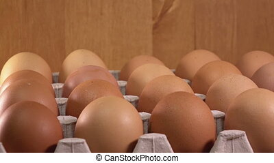 Eggs lie in the cardboard support ,