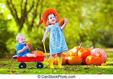 Kids at Halloween pumpkin patch - Kids playing at pumpkin...