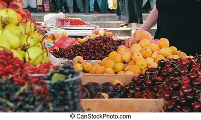 Showcase Fruits. Woman chooses fruits on spontaneous market...
