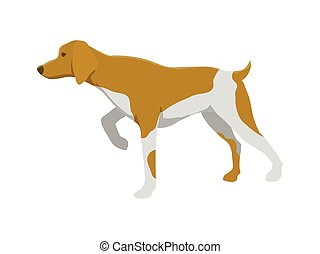 Hunting dog vector illustration - Hunting dog flat vector...