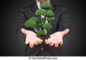 segurando, árvore, mão, escuro, palma, fundo, homem negócios, verde