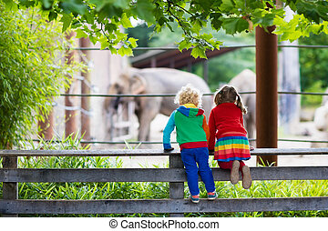 Kids watching elephant at the zoo - Two children, little...