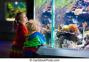 Kids watching fish in tropical aquarium - Little boy and...