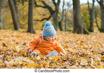 Toddler baby playing in autumn park