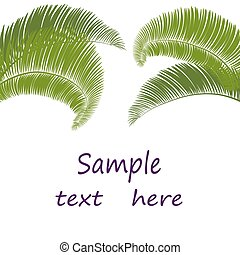 Leaves of palm tree on white background. illustration