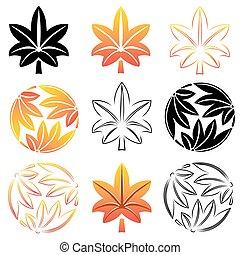The stylized set maple leaves, Japanese symbolism...