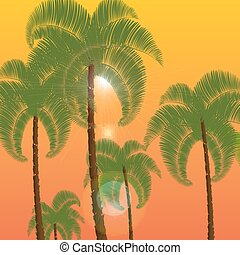 Palm in two rows, a bottom view. Against the background of orange sunset, sunrise. illustration