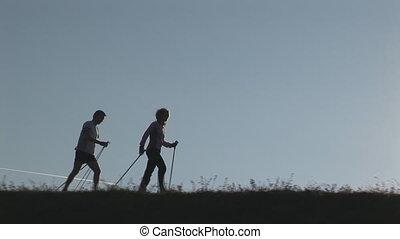 two nordic walkers - nordic walkers silhouette