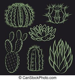 Vector set of isolated cactus.