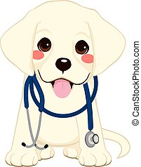 Dog Vet Stethoscope - Cute golden retriever puppy dog as vet...
