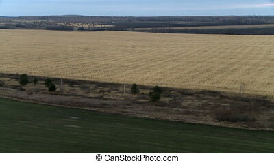 Landscape aerial shot - Field landscape with forest, river...