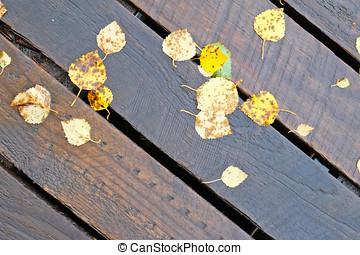 Yellow autumn leaves. - Wooden wet outdoor floor. Yellow...