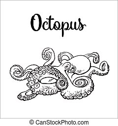 Drawing of octopus isolated on white background - Live...