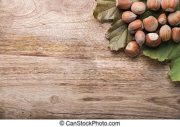hazel - group of hazel above to green leaf on wood