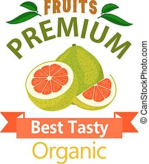 Pomelo organic fruits vector poster