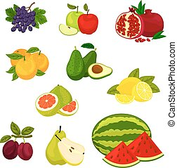 Fresh fruits isolated vector icons set.