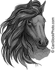 Black horse with passionate glance portrait Beautiful...