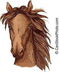 Beautiful brown horse portrait - Beautiful brown horse...