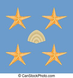 Exotic Seashell Seamless Pattern on Blue Background