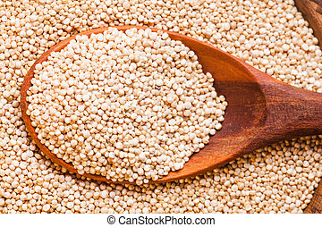 Pile of quinoa grain - White quinoa seeds on a wooden spoons...