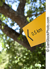 Sign in the woods - Sign for hiking in a forest in summer