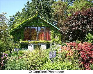 Cabin covered in vine