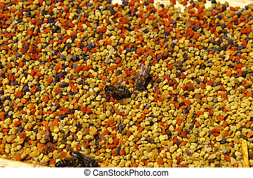 flower pollens in the honey comb with bees