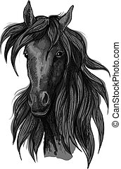 Arabian horse head sketch with black racehorse - Arabian...
