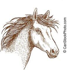 Sketch of horse head for equine design - Sketched stallion...