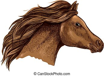 Sketched brown horse for equestrian design - Sketched brown...