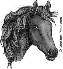 Sketch of black horse head of arabian breed - Sketch of...